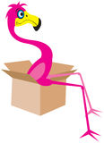 Flamingo Illustration Royalty Free Stock Photo
