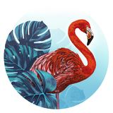 Flamingo in front of tropical leaves. Flamingo Illustration in tropical setting Royalty Free Stock Photos