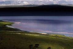 Flamingo lake. A lake in Kenya with flamingos taken from cliff above Stock Photography
