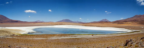 Flamingo Lake Salar de Uyuni, Bolivia. A panoramic view of the flamingo filled Laguna Hedionda in the Salar de Uyuni desert, Bolivia royalty free stock image