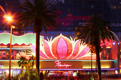Flamingo Las Vegas royalty free stock images