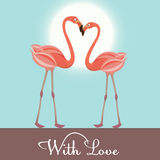 Flamingo love. Vector Illustration Royalty Free Stock Image