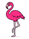 Flamingo Over White Background Stock Image