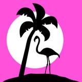 Flamingo palm Royalty Free Stock Photo