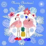 Hot Christmas tropical holiday. Flamingo, palm leaves and snowflakes. Template for cards and party invitations Royalty Free Stock Photography