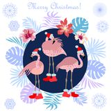 Hot Christmas tropical holiday. Flamingo, palm leaves and snowflakes. Template for cards and party invitations Stock Images