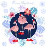 Hot Christmas tropical holiday. royalty free illustration