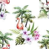 Flamingo with palms and flowers Royalty Free Stock Photography