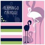 Flamingo paradise vector. Flamingo bird paradise vector illustration Royalty Free Stock Photo