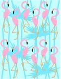 flamingo patroon Stock Afbeeldingen
