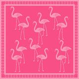 Flamingo Pattern. Pink flamingo pattern with a border Stock Images