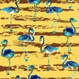 Flamingo pattern. Summer watercolor background. Stock Images