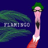 Hipster flamingo royalty free stock photography