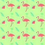 Flamingo seamless exotic pattern. Tropical floral and flamingo fresh background Royalty Free Stock Photos