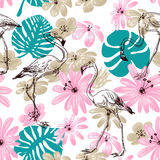 Flamingo Seamless Pattern Royalty Free Stock Photography