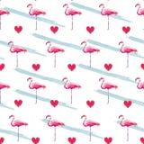 Flamingo seamless pattern . Heart pattern illustration. Cute fashion print Royalty Free Stock Photography