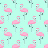 Flamingo seamless pattern on mint green background. Royalty Free Stock Images