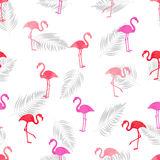 Flamingo seamless pattern. Watercolor vector illustration. Stock Images
