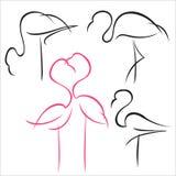 Flamingo set Stock Photo