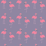 Flamingo set. Seamless Pattern Exotic tropical bird. Zoo animal collection. Cute cartoon character. Decoration element. Violet bac Stock Photography