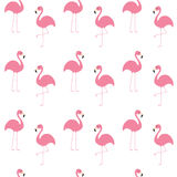 Flamingo set. Seamless Pattern Exotic tropical bird. Zoo animal collection. Cute cartoon character. Decoration element. White back Stock Image