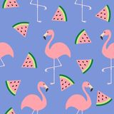 Flamingo set. Seamless Pattern Flat design. Exotic tropical bird. Watermelon triangle slice seeds. Zoo animal collection. Cute car. Toon character. Decoration Stock Image