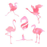 Flamingo set vector stock photo
