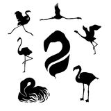 Flamingo set vector. Flamingo set of silhouettes vector royalty free illustration