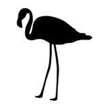 Flamingo silhouette Royalty Free Stock Photo