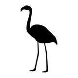 Flamingo silhouette Stock Photography