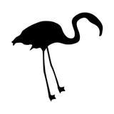 Flamingo silhouette Royalty Free Stock Photos