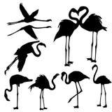 Flamingo Silhouettes - Illustration Royalty Free Stock Photo