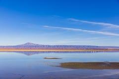 Flamingo, sjö, färger och avlägsna berg i nationell reserv för Los-flamenco Royaltyfri Fotografi
