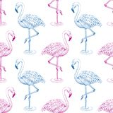 Flamingo sketch seamless pattern. Blue and pink flamingos on white background royalty free illustration