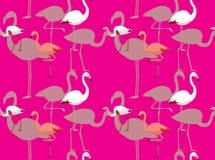 Flamingo Species Cartoon Seamless Wallpaper Stock Photo