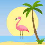 The flamingo stands in the water. Flat design,  illustration Royalty Free Stock Image