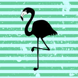 Flamingo on stripey background Royalty Free Stock Image