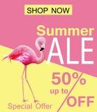 Flamingo Summer sale card Vector. violet and pink backgrounds royalty free illustration