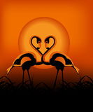 Flamingo in the sunset. Kind of Urban Art Flamingo in the sunset between black and orange color Stock Photography