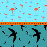 Flamingo swallow seamless pattern Royalty Free Stock Photos