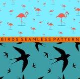 Flamingo swallow seamless pattern Royalty Free Stock Photos
