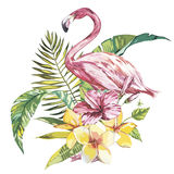 Flamingo with tropical flowers and leaf.  Stock Photography
