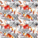 Flamingo, tropical leaves, exotic flowers. Seamlessmonochrome neutral background. Watercolor Royalty Free Stock Photography