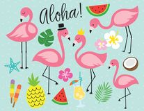 Flamingo Tropical Summer Vector Illustration. Cute flamingo with tropical summer vector illustration graphic elements such as pineapple, watermelon, hibiscus Royalty Free Stock Photo