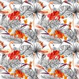 Flamingo, tropische bladeren, exotische bloemen Seamlessmonochrome neutrale achtergrond watercolor Royalty-vrije Stock Fotografie
