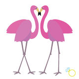 Flamingo two. Vector illustration background or post card with two flamingos and wedding ring Royalty Free Stock Image