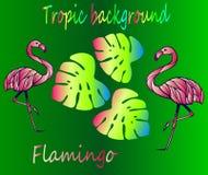 Flamingo und tropische Blätter - Neonskizze lizenzfreie abbildung