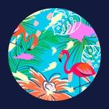 Flamingo vector illustration in a circle. Vector Illustration