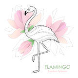 Flamingo. Vector illustration with a flamingo. Tropical Bird. Logo. Stock Images
