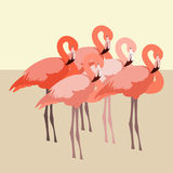 Flamingo vector illustration style flat Royalty Free Stock Photography